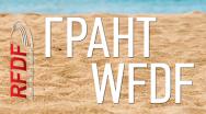 Грант на развитие пляжного алтимата